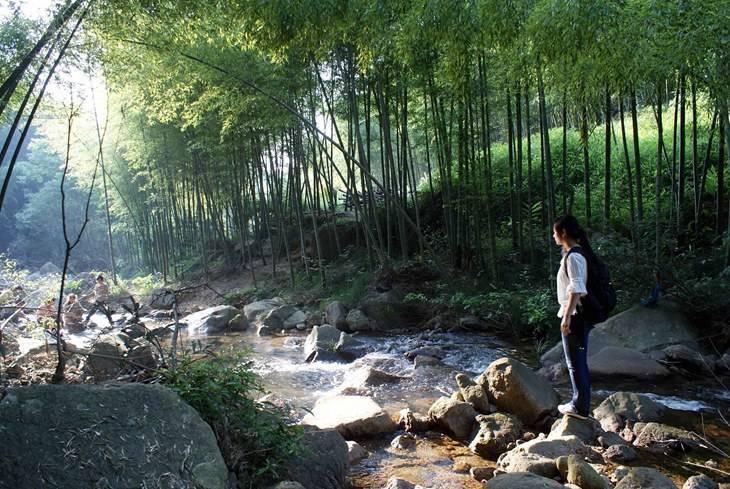 广州星溪线在哪里?