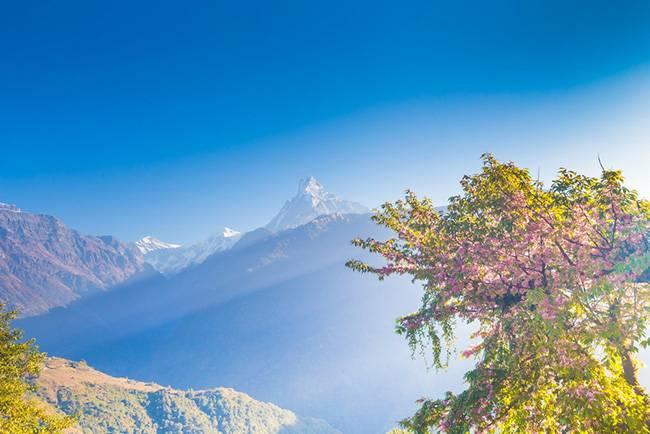 挑站ABC(8天) 尼泊尔高山王国13晚14日专业徒步团 (加都集合)