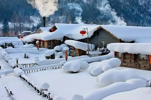 【雪遇小勇士】哈尔滨-东北虎林园-冰壶体验-冰雪大世界-大雪谷-雪乡-亚布力滑雪温泉6天5晚亲子游
