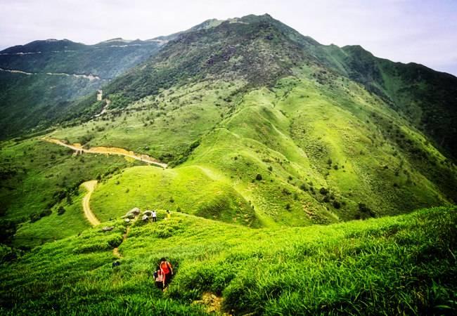 【绿色草甸】惠东大南山精华段13公里穿越  第67期  6月29日