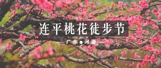 连平桃花徒步节