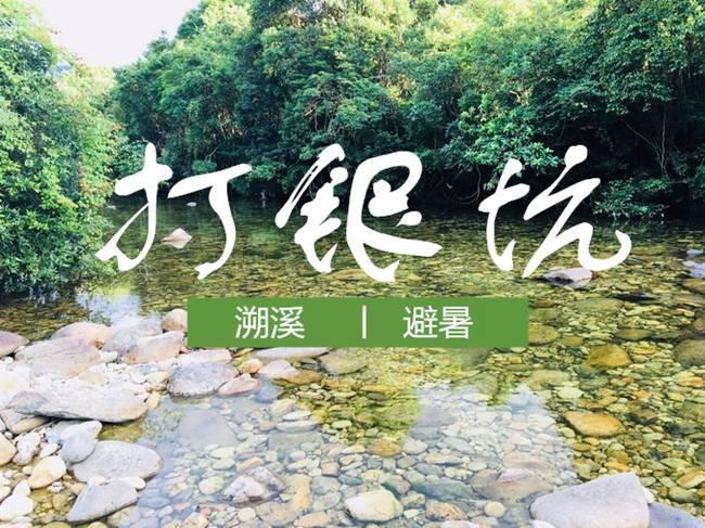 【杨梅采摘季】5月30日 惠东白盆珠打银坑溯溪、摘杨梅、泡潭子避暑 第2期