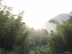 广州影古线徒步路线