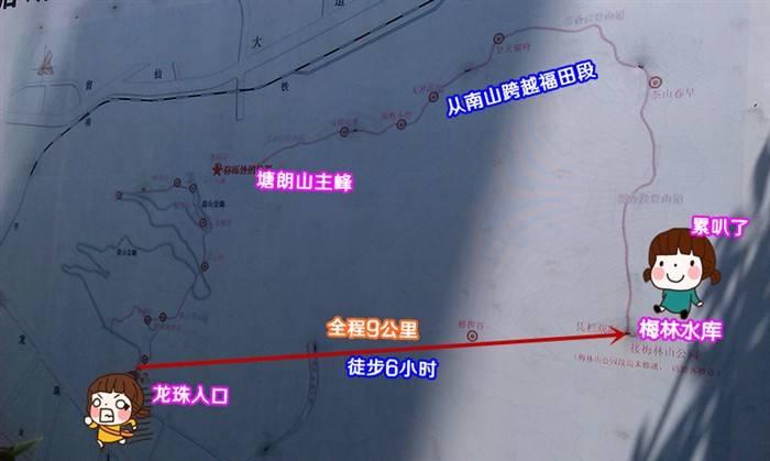 五五户外徒步六小时,西丽塘朗山穿越到梅林水库