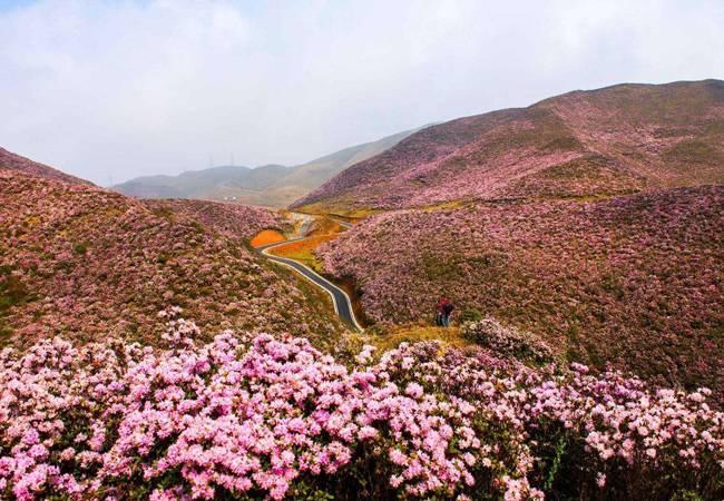 五五戶外黃果樹瀑布、烏蒙山大草原、青巖古鎮4天游