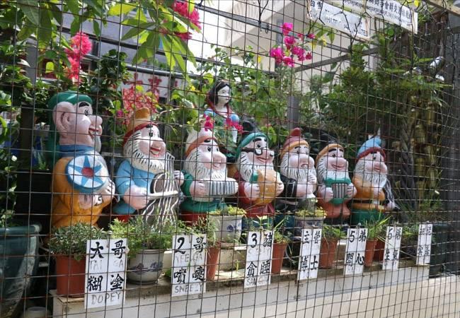 【港島情懷】 香港東澳古道 尋覓地道港味 第29期 7月6日