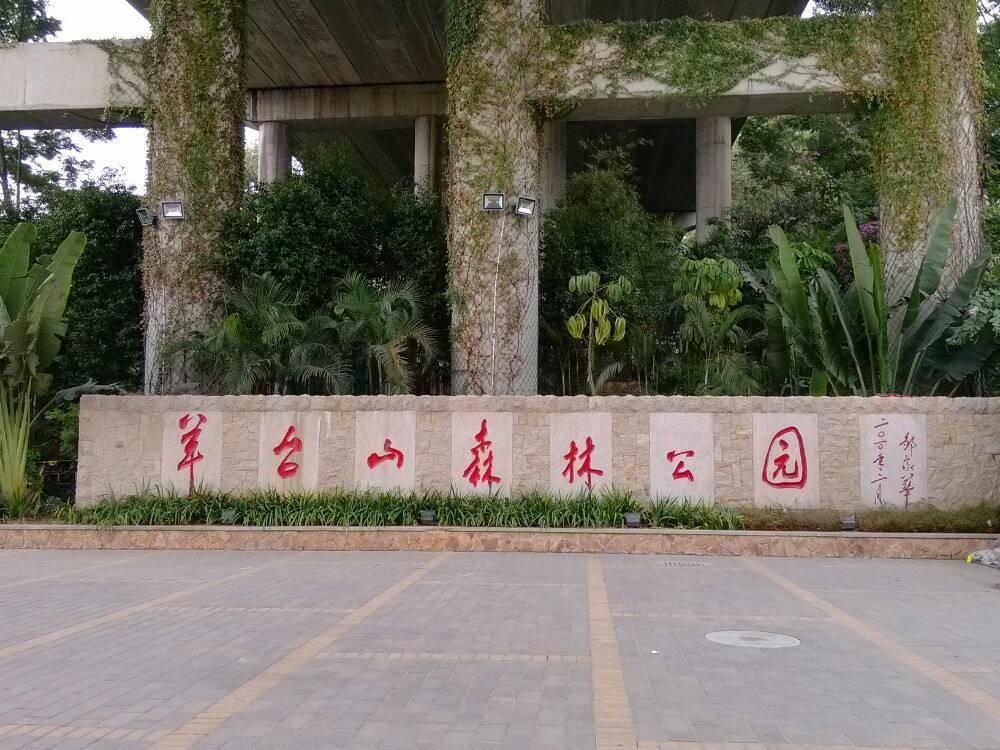 深圳周边游,羊台山森林公园游玩攻略