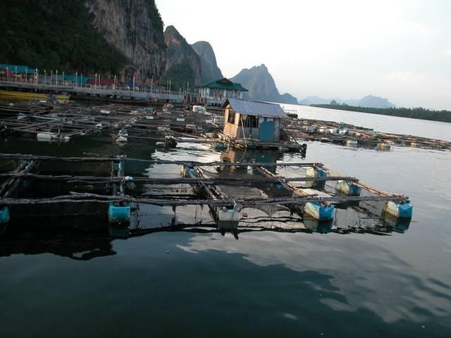 惠州2日游