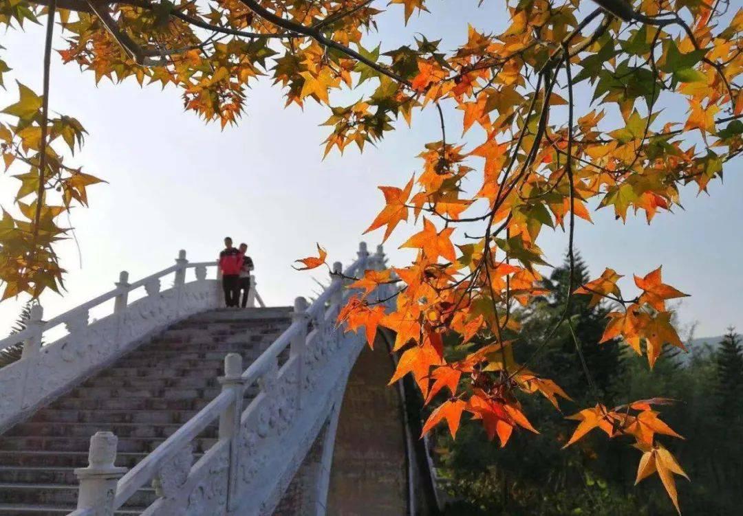 11月25号:2018广东•佛冈 第一届枫行田野大型徒步活动开始报名啦~