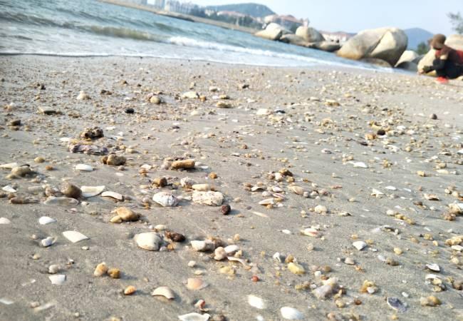 五五户外石头上的旅行海螺角徒步穿越
