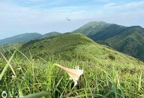 【四大名山】05月22日 惠州罗浮山祈福+飞云顶1296M 第6期